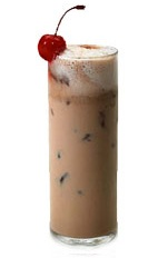 Picture of Amalyser. The Amalyser drink is made from Amarula, vodka, Kahlua coffee liqueur and cola, and served in a highball glass.