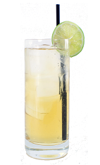 Apple Fizz - The Apple Fizz is made from Apple Brandy, apple juice, fresh lime juice and club soda, and served in a chilled highball glass.