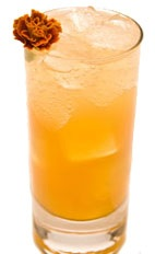 Blame it on Rio! - The Blame it on Rio! drink is made from Leblon Cachaca, apricot liqueur, lemon juice, bitters and simple syrup, and served in a highball glass.