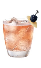 French Ginger Ale - The French Ginger Ale drink is made from Chambord flavored vodka and ginger ale, and served in an old-fashioned glass.