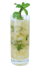 Mint Julep - The Mint Julep is made from Bourbon, sugar syrup and fresh mint leaves, and served in a chilled highball glass.