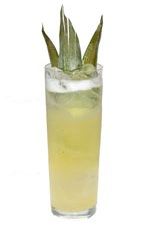 Pineapple Fizz - The Pineapple Fizz drink is made from rum, pineapple juice, simple syrup and club soda, and served in a chilled collins glass.