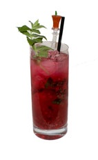 Sonoran Mojito - The Sonoran Mojito drink is made from rum, prickly pear cactus fruit, mint and sugar, and served in a highball glass.