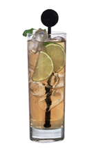 Fidel Castro - The Fidel Castro drink is made from dark rum, lime juice and ginger ale, and served in a highball glass.