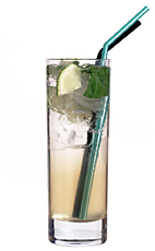 Kyoto - The Kyoto drink is made from gin, fresh lime juice, Monin peach syrup, sugar syrup and mint leaves, and served in a highball glass.
