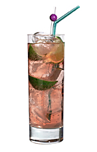 Nice and Freeze - The Nice and Freeze drink is made from light rum, Cointreau, lime juice and Schweppes Russchian, and served in a highball glass.