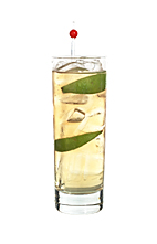 Nikki Sixx - The Nikki Sixx drink is made from whiskey (Jack Daniels), lemon-lime soda and lime wedges, and served in a highball glass.