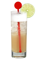 Southern Rickey - The Southern Rickey drink is made from scotch whiskey, lemon juice, lime juice, egg white and club soda, and served in a highball glass.
