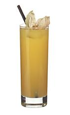 Troja - The Troja drink is made from whiskey, amaretto, Cointreau and orange juice, and served in a highball glass.