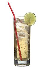 Vodka Kick - The Vodka Kick drink is made from vodka, lime juice and ginger ale, and served in a highball glass.