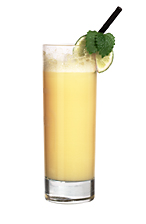 Yellow Cab - The Yellow Cab dirnk is made from whiskey, Advocaat, Sockerlag and fresh lemon juice, and served in a highball glass.