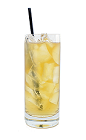 The Brandy Fizz drink is made from Brandy, sugar, fresh lemon juice and club soda, and served in a chilled highball glass.