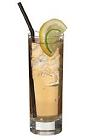 The Moscow Mule drink is made from vodka, ginger ale and lime juice, and served in a highball glass.