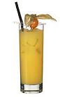 The Parrot drink is made from Pernod and orange juice, and served in a highball glass.