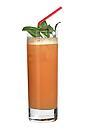 The Rum Punch drink is made from rum, sugar syrup, Angostura Bitters and lime juice, and served in a highball glass.